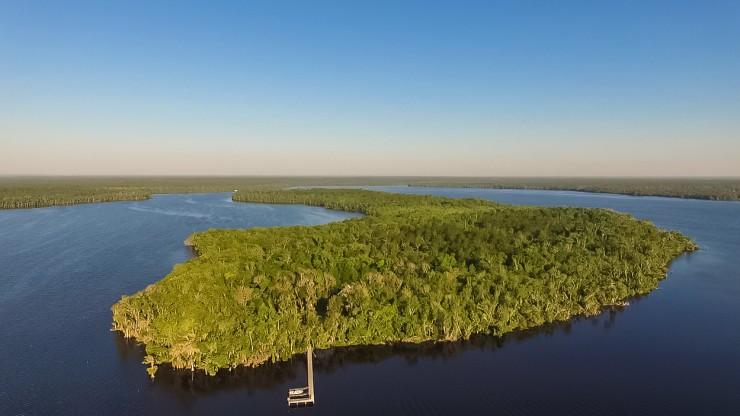 237 Acres Of Florida Nature